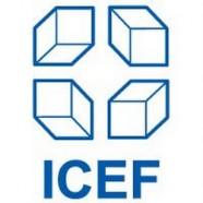 ICEF Online