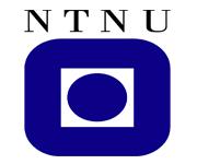NTNU University